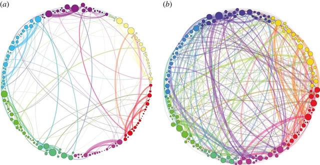 werking van psychedelica op de hersenen
